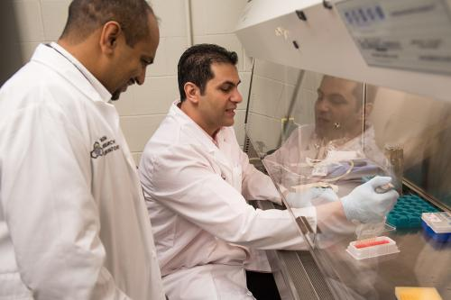 Ali Salem and Kareem Ebeid in Salem's lab in the Pharmacy building