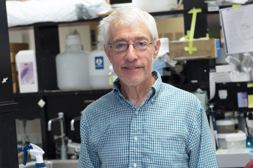 Stanley Perlman is a University of Iowa researcher and one of the world's leading coronavirus experts.