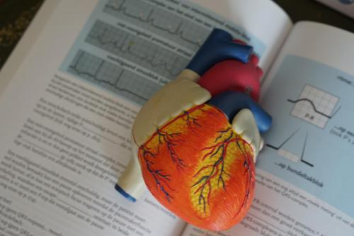 model of heart on textbook