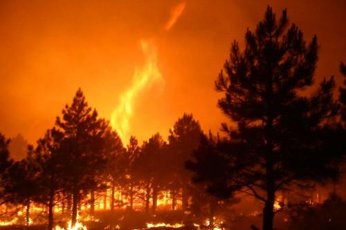 A fire in Kaibab National Forest in 2006.